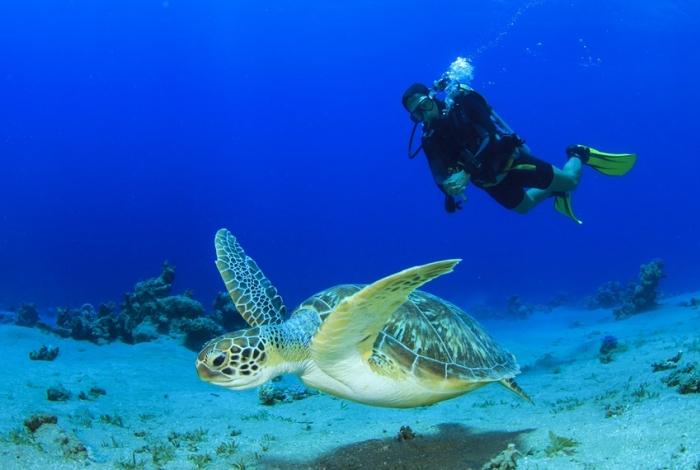 Il National Marine Park di Zakynthos