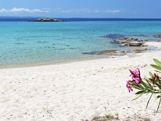 Vacanza a Zante costa occidentale
